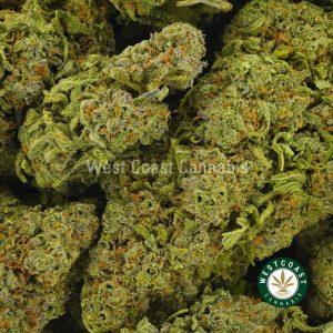 Buy Cannabis Fruity Pebbles at Wccannabis Online Shop