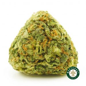 Buy Cannabis Fruit Punch at Wccannabis Online Shop
