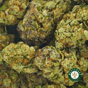 Buy Cannabis Lemonade at Wccannabis Online Shop