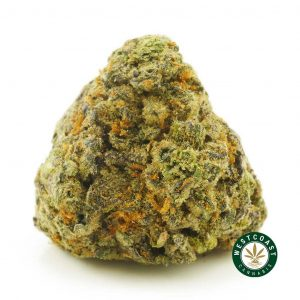 Buy Cannabis Purple Wedding Cake at Wccannabis Online Shop