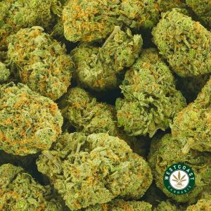 Buy Cannabis Citrique at Wccannabis Online Shop