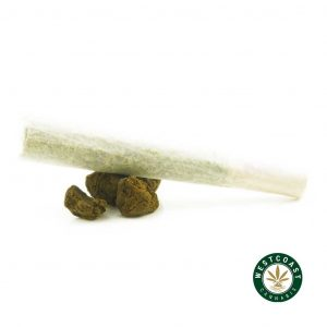 Buy Sesh Concentrates Prerolls at Wccannabis Online Shop