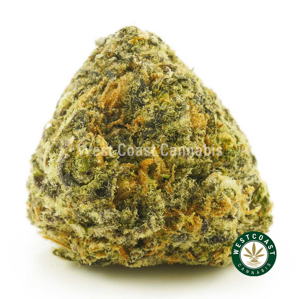 Buy Cannabis Blueberry Cheesecake at Wccannabis Online Shop