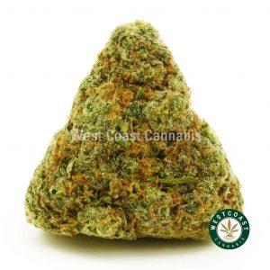 Buy Cannabis Astroboy at Wccannabis Online Shop