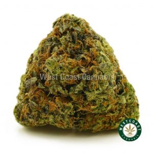 Buy Cannabis Pink Gelato at Wccannabis Onilne Shop