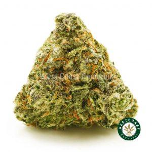 Buy Cannabis Maui Wowie at Wccannabis Online Shop