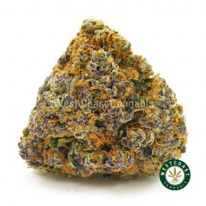 Buy Cannabis Sundae Driver at Wccannabis Online Shop
