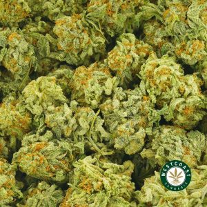 Buy Cannabis Blueberry Faygo at Wccannabis Online Shop
