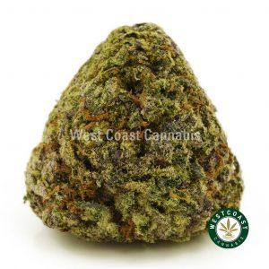 Buy Cannabis Purple Gas at Wccannabis Online Shop