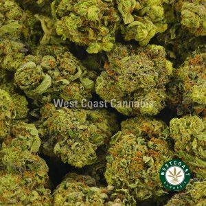 Buy Cannabis Atomic Pink at Wccannabis Online Shop