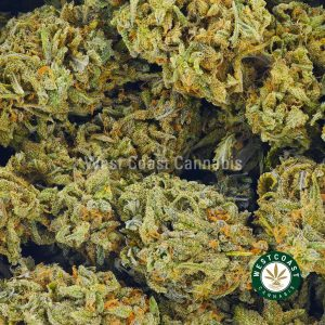 Buy Cannabis Green Goblin at Wccannabis Online Shop
