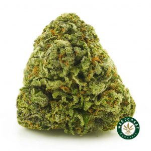 Buy Cannabis Blueberry OG at Wccannabis Online Shop