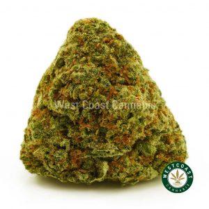 Buy Cannabis Sugar Cookies at Wccannabis Online Shop