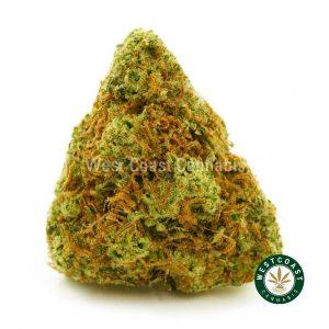 Buy Cannabis Orange Crush at Wccannabis Online Shop