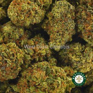 Buy Cannabis Pebble OG at Wccannabis Online Shop