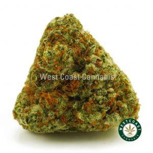 Buy Cannabis Grease Monkey at Wccannabis Online Shop
