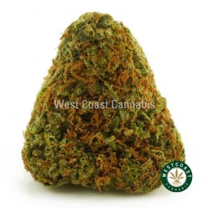Buy Cannabis Sunset Sherbert at Wccannabis Online Shop