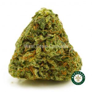 Buy Cannabis Island Pink at Wccannabis Online Shop