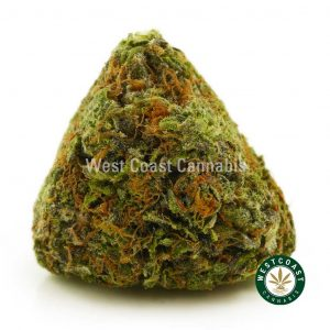 Buy Cannabis Pink Punch at Wccannabis Online Shop