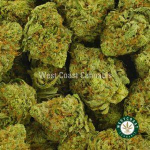 Buy Cannabis Pink Diamond at Wccannabis Online Shop