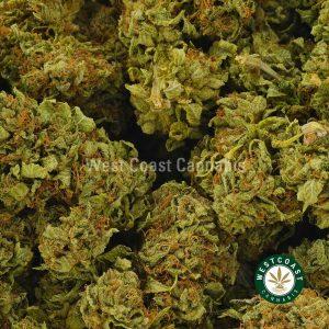 Buy Cannabis Alien OG at Wccannabis Online Shop