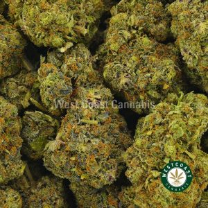 Buy Cannabis Pink Ice Wreck at Wccannabis Online Shop