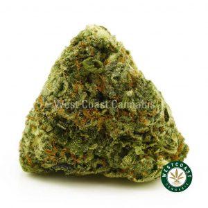 Buy Cannabis Thai Fantasy at Wccannabis Online Shop