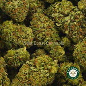 Buy Cannabis OG Kush at Wccannabis Online Shop
