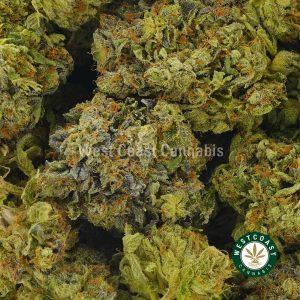 Buy Cannabis Purple Space Cookies at Wccannabis Online Shop