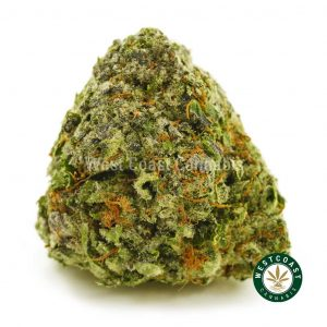 Buy Cannabis Gorilla Glue 4 at Wccannabis Online Shop