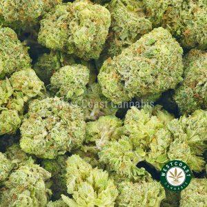 Buy Cannabis Lemon Meringue at Wccannabis Online Shop