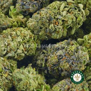 Buy Cannabis Pink Picasso at Wccannabis Online Shop