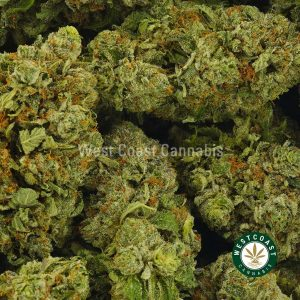 Buy Cannabis Bubba Fresh at Wccannabis Online Shop