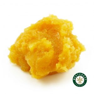 Buy Live Resin Brownie Scout at Wccannabis Online Shop