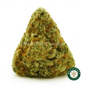 Buy Cannabis Gorilla Cookies at Wccannabis Online Shop