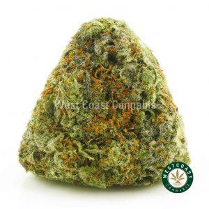 Buy Cannabis Tropic Thunderstorm at Wccannabis Online Shop