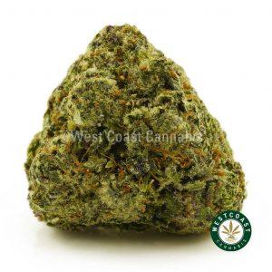 Buy Cannabis Astro Cookies at Wccannabis Online Shop