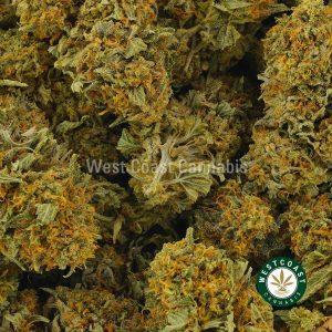 Buy Cannabis Pine Tar at Wccannabis Online Shop