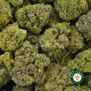 Buy Cannabis Supreme Death Bubba at Wccannabis Online Shop
