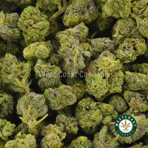 Buy Cannabis Black Death Popcorn at Wccannabis Online Shop
