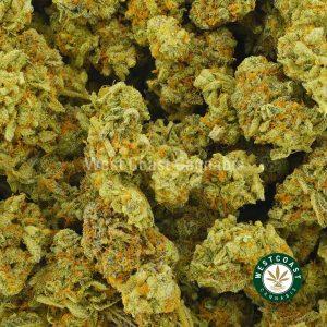 Buy Cannabis Strawberry Short Cake at Wccannabis Online Shop