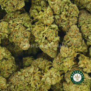 Buy Cannabis Blueberry Dream at Wccannabis Online Shop