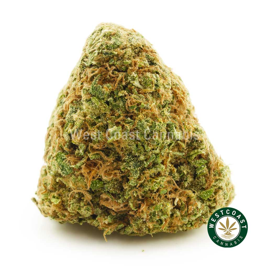 Buy Cannabis Pineapple Sage at Wccannabis Online