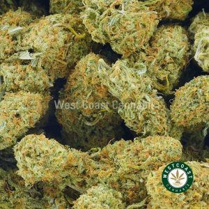 Buy Cannabis Strawberry Sweetness at Wccannabis Online Shop