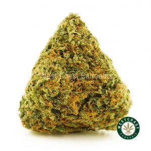 Buy Cannabis Sweet Tooth at Wccannabis Online Shop