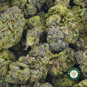 Buy Cannabis Tom Ford Pink Kush at Wccannabis Online Shop
