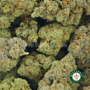 Buy Cannabis Milky Way at Wccannabis Online Shop
