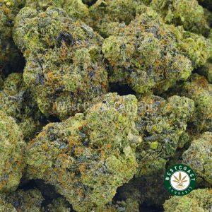 Buy Cannabis Galactic Gas at Wccannabis Online Shop