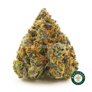 Buy Cannabis Pink Congo at Wccannabis Online Shop