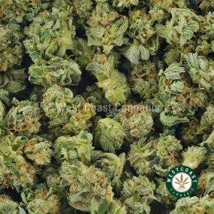 Buy Cannabis Purple Diesel at Wccannabis Online Shop